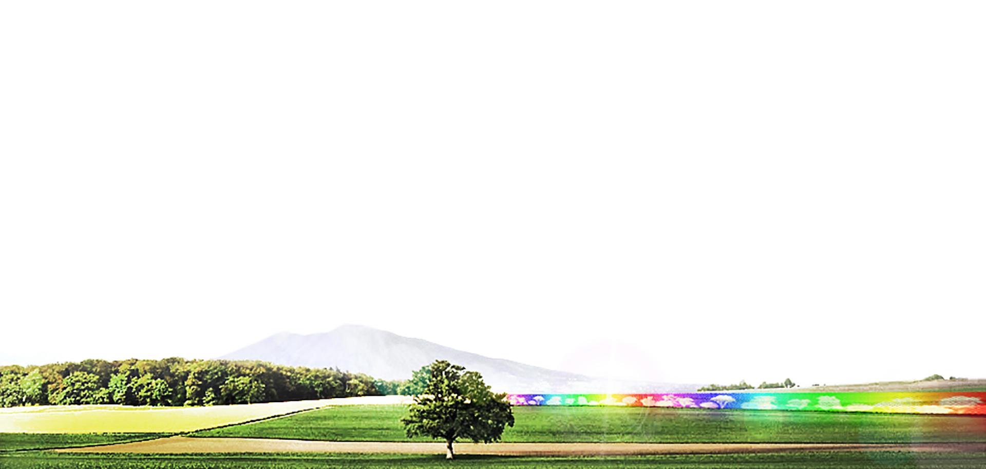 DFG Architetti_Green Boulevards (1)